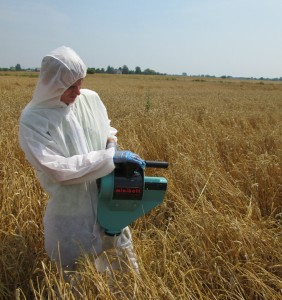 Sampling wheat insecticide trials