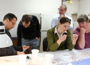 Bee health unit staff participate in laboratory work during the workshop