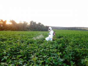 Spraying soybean trials for Helicoverpa sps in Paraguay