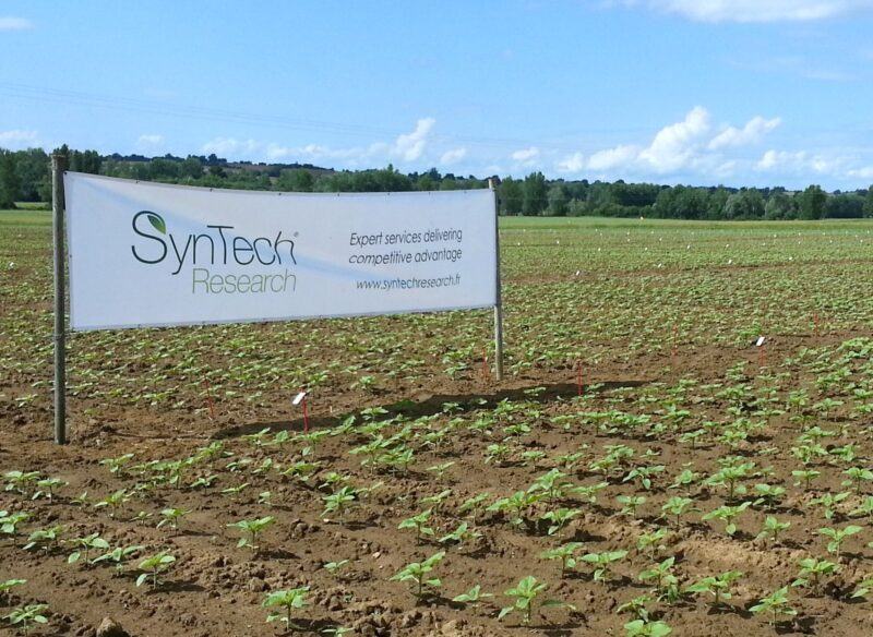 SynTech EU and Latin America sites pass GLP inspections
