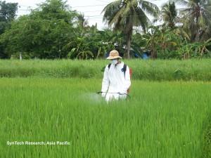 Residue trial on Rice, Vietnam copy 2