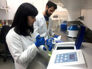 Toxicology - Algal testing