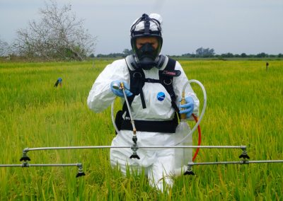 Spraying Rice Herbicide